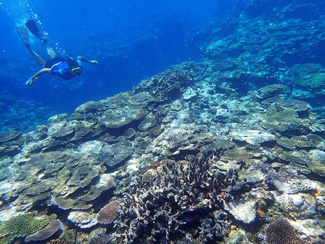 Kayak & Snorkeling03